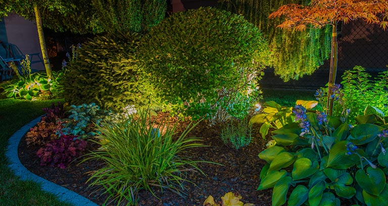 Eugene landscape accent lighting