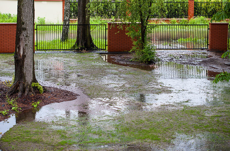 eugene oregon drainage solutions
