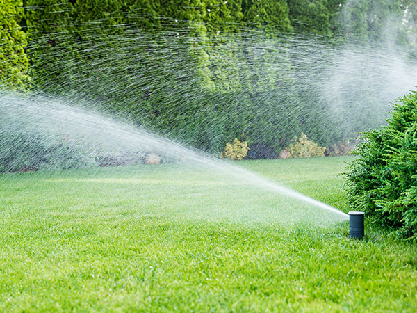 eugene irrigation contractor