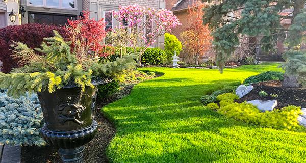 Eugene Landscape Maintenance