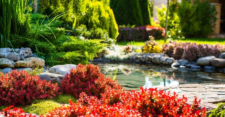 Eugene landscaping services